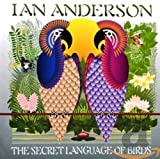 The Secret Language Of Birds (2000)