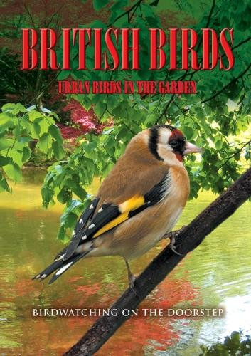 British Birds: Urban Birds in the Garden