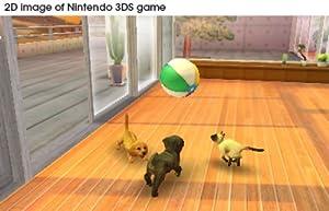 Nintendogs Retriever
