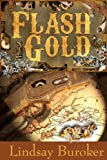 Flash Gold by Lindsay Buroker