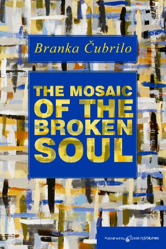 Book Cover - The Mosaic of the Broken Soul