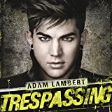 Trespassing (2012)