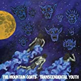 Transcendental Youth (2012)