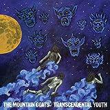 Transcendental Youth (2012)