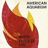 Burn.Flicker.Die. (2012)