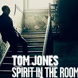 Spirit In The Room (2012)