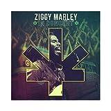 Ziggy Marley In Concert (Album) by Ziggy Marley