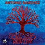 New Life (2013)