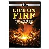 Life on Fire (2010 - 2011) (Mini Series)