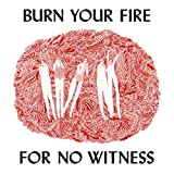 Burn Your Fire For No Witness (2014)