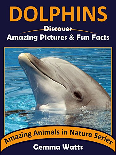Discover The Book : DOLPHINS! Kids Book About Dolphins ... - photo#25