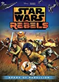 Star Wars Rebels (2014) (Television Series)