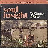 Soul Insight (2014)