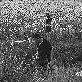 Jesu / Sun Kil Moon (2016)