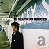 The Fine Art Of Self Destruction (2002)