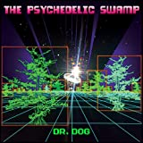 The Psychedelic Swamp (2016)