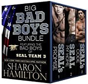 Big Bad Boys Bundle, Bad Boys of SEAL Team…