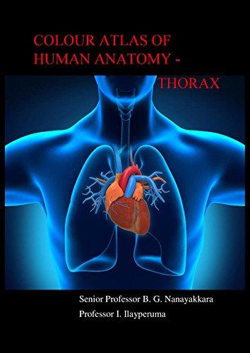 Mcminn Atlas Of Human Anatomy Pdf