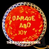 Damage And Joy (2017)