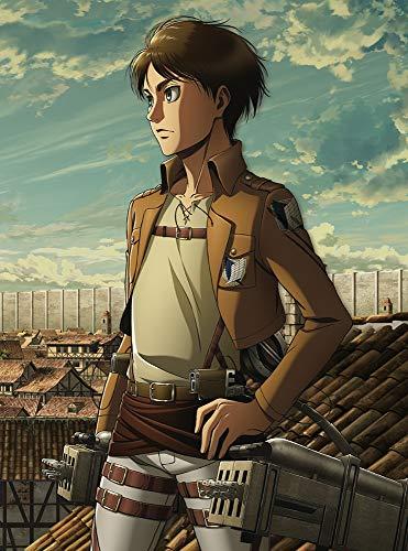 TVアニメ『進撃の巨人』第3期が2018年に放送決定!