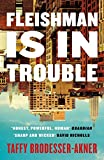 Fleishman Is in Trouble: One of the best-selling novels of 2020