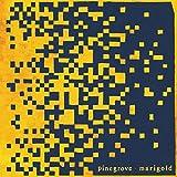 Marigold (2020)