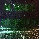 Migration Stories (2020)