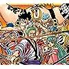 ONE-PIECE - 卜の康,ルフィ,ゾロ,花のヒョウゴロウ,光月日和 QHD(1080×960) 245914