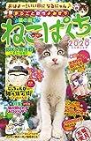 ねこぱんち No.167 猫の庭号 (にゃんCOMI)