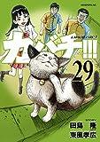 カバチ!!! -カバチタレ!3-(29) (モーニングコミックス)