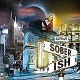 Soberish (2021)