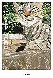 土になる (文春e-book)