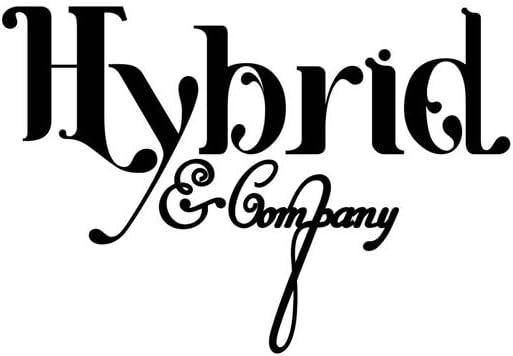 HyBrid & Company