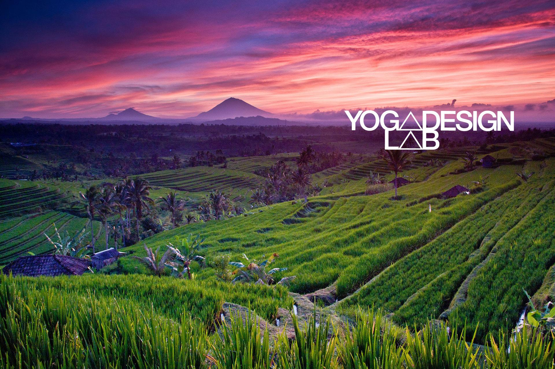 Amazon Com Yoga Design Lab