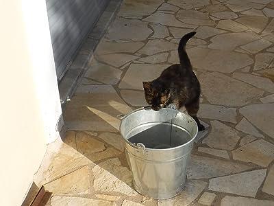 V.D. Bucket