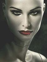 S. L. Grey