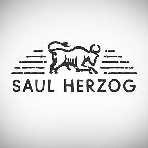 Saul Herzog