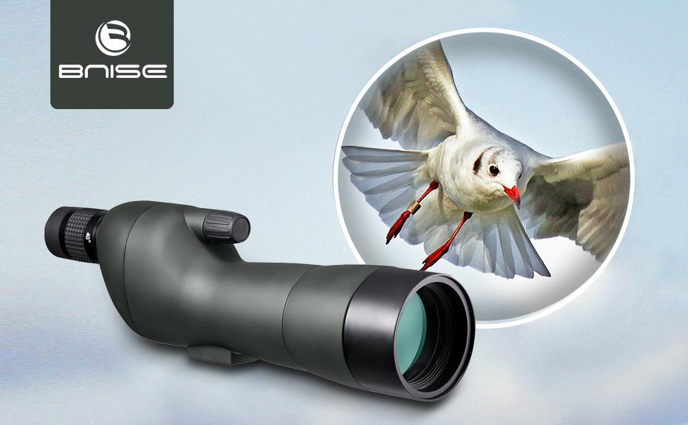 Gosky spektive vogelbeobachtung  gosky spektive