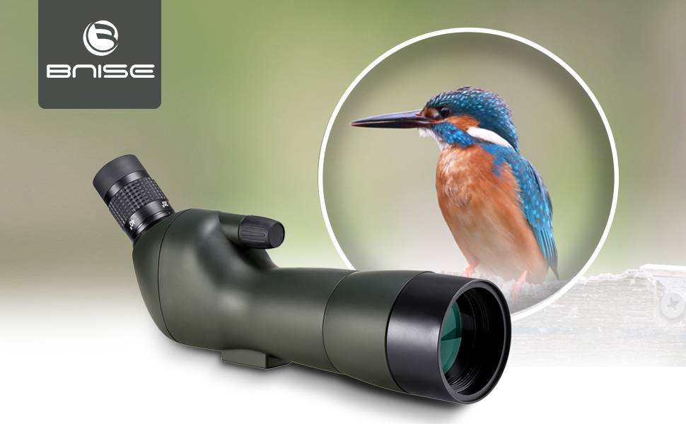 Bnise spektiv vogelbeobachtung spotting scope: amazon.de: elektronik