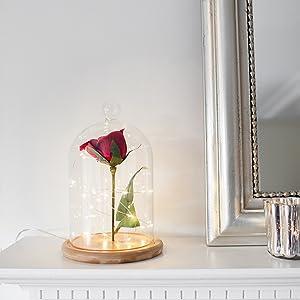 deko glasglocke mit holzboden 19cm lights4fun. Black Bedroom Furniture Sets. Home Design Ideas