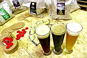 Cervezanía - Kit de elaboración de cerveza Kadabra Red Ale. Elabora 5 litros de cerveza en casa: Amazon.es: Alimentación y bebidas