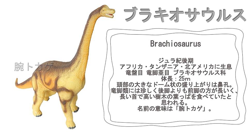 Amazon | HS ブラキオサウルス ...