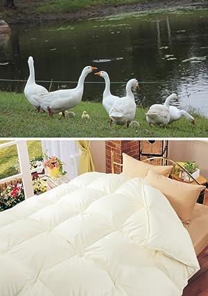 セレクト羽毛布団 ハンガリー産ホワイトグース95% 200×210cmワイドダブルサイズ 3