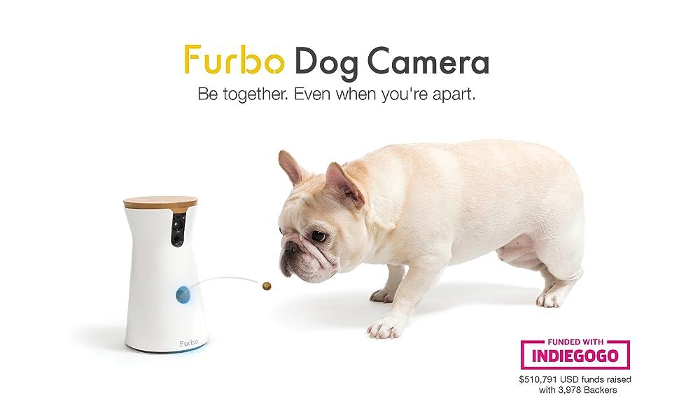 Dog Wifi Camera Treats