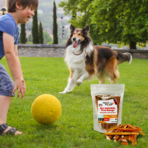 bully sticks and beef tendons healthy free range angus beef dog treats the. Black Bedroom Furniture Sets. Home Design Ideas