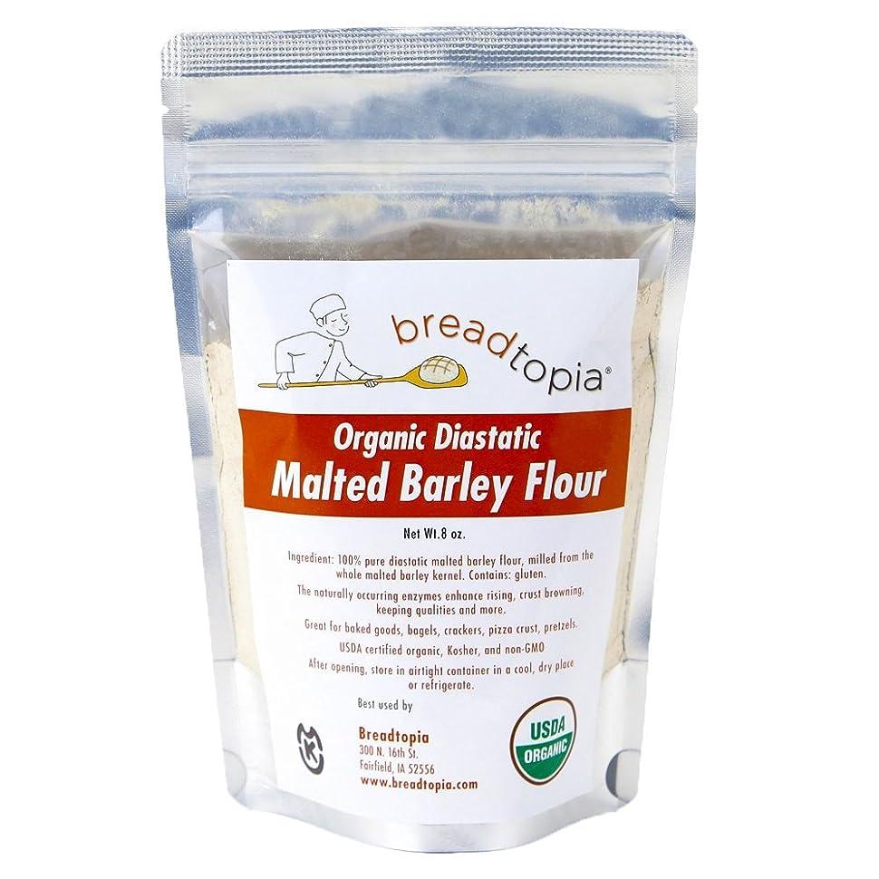 Amazon.com : Breadtopia Diastatic Barley Malt Powder