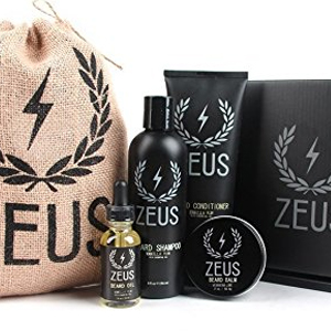 Zeus Everyday Beard Grooming Kit- Men's Daily Set for ...