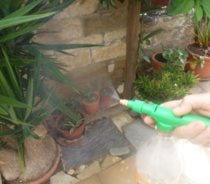 Image Result For For Home And Garden Sprayera
