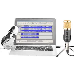 recording microphone usb fifine plug play condenser microphone for pc computer. Black Bedroom Furniture Sets. Home Design Ideas