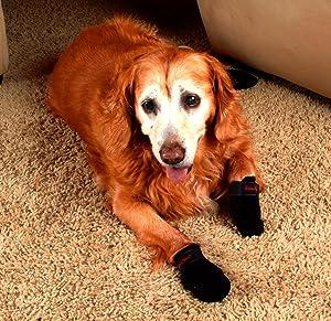 Amazoncom  Ultra Paws Traction Dog Boots Medium  Pet Boots - Dog shoes for hardwood floors